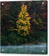 Autumn Splendor Acrylic Print by Shane Holsclaw