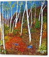 Autumn Splendour Acrylic Print