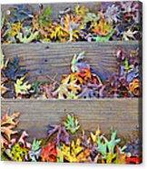 Autumn Steps Acrylic Print by William Schmid