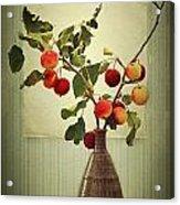 Autumn Stillife Acrylic Print