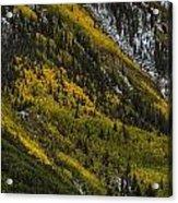 Autumn Streaks Acrylic Print