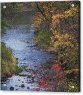 Autumn Stream Acrylic Print