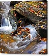 Autumn Stream North Georgia Acrylic Print