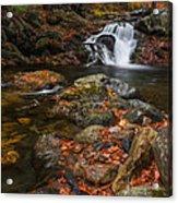Autumn Streams In Tamworth Acrylic Print