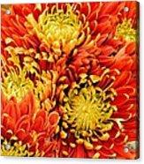Autumn Sunrise Bouquet Acrylic Print