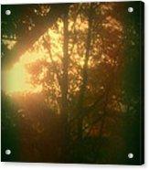 Autumn Sunsets Acrylic Print