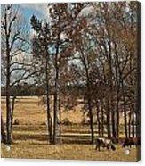 Autumn Texas Pasture Acrylic Print