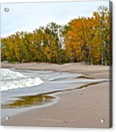 Autumn Tides Acrylic Print