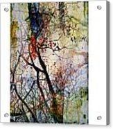 Autumn Tree Composition  Acrylic Print by Xoanxo Cespon