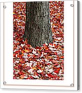 Autumn Tree Poster Acrylic Print