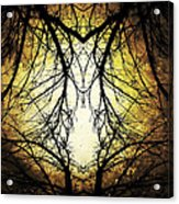 Autumn Tree Veins Acrylic Print