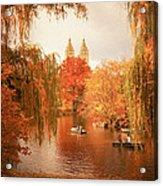 Autumn Trees - Central Park - New York City Acrylic Print by Vivienne Gucwa
