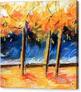 Autumn Trees Acrylic Print