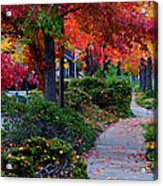 Autumn Walk In Grants Pass Acrylic Print