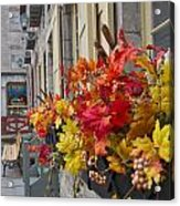 Autumn Window Box Acrylic Print by Gordon  Grimwade