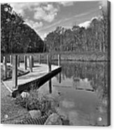 Autumn Without Color Acrylic Print