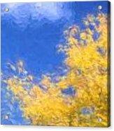 Autumn Xiv Acrylic Print