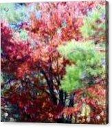 Autumn Xxxxiv Acrylic Print