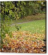 Autumnal 1 Acrylic Print