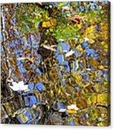 Autumnal Abstracious Acrylic Print