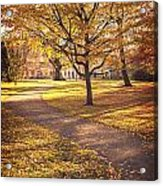 Autumnal Park Acrylic Print