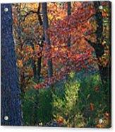 Autumnal Rock Acrylic Print