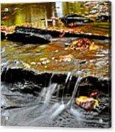 Autumnal Serenity Acrylic Print