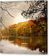 Autumn's Adieu Acrylic Print