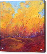 Autumn's Blaze Acrylic Print