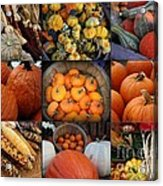Autumn's Bounty Acrylic Print