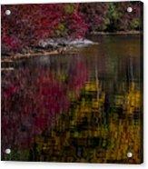 Autumns Color Pallette Acrylic Print