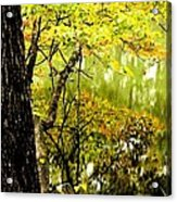 Autumn's First Reflections II Acrylic Print
