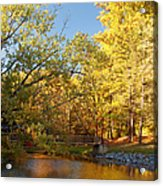 Autumn's Golden Pond Acrylic Print by Kim Hojnacki