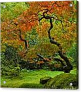 Autumn's Paintbrush Acrylic Print