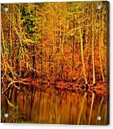 Autumn's Past Acrylic Print