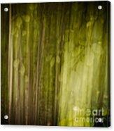Autumns' Promise 8 Acrylic Print