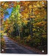 Autumns Road Acrylic Print