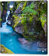 Avalanche Creek Gorge Acrylic Print