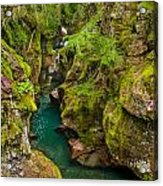 Avalanche Gorge In September Acrylic Print