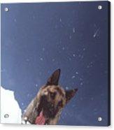 Avalanche Rescue Acrylic Print