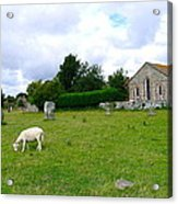 Avebury Stones And Sheep Acrylic Print