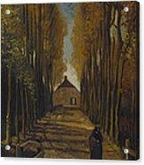 Avenue Of Poplars In Autumn Acrylic Print