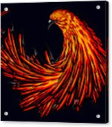Avian Acrylic Print