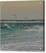Avon Pier And Birds 7/30 Acrylic Print