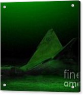 Avro Arrow In Lake Ontario Acrylic Print by Tom Straub