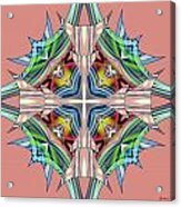 Awaken 63 Acrylic Print