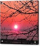 Awaken The Dawn Acrylic Print