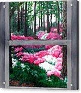 Azalea Bowl Overlook Gardens Acrylic Print
