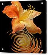Azalea Ripples Vertical Acrylic Print