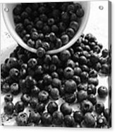 B And W Blueberries Acrylic Print